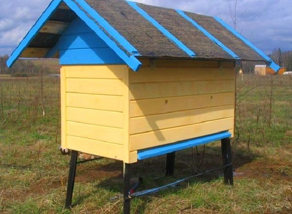How to make a beehive for your own bees