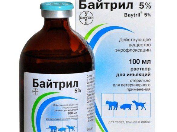 5% Baytril solution