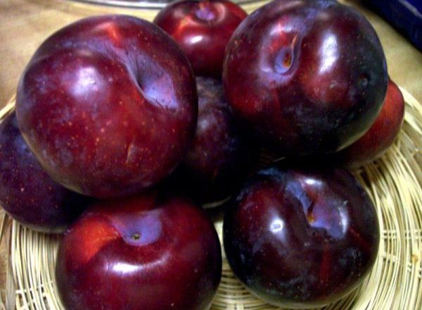 The benefits and harm of plums
