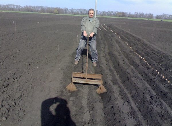 Planting Potatoes with Hand-Held Appliances