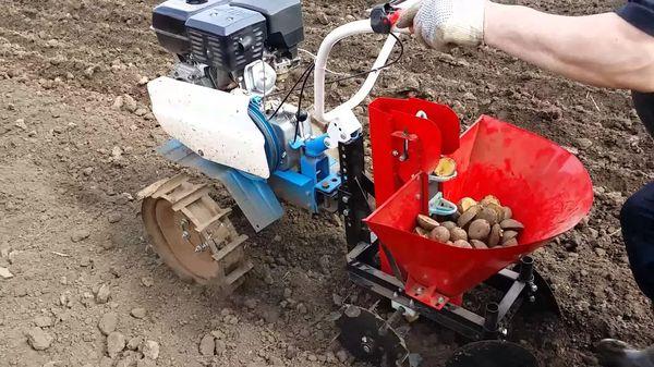 Planting potato walker