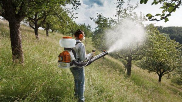 spraying autumn trees