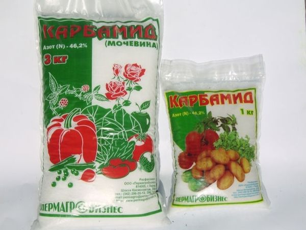 Urea can be used in the fall