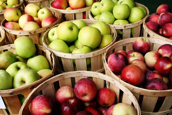 The best varieties of apples