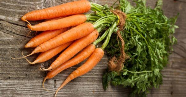 planting carrots using the kizima method